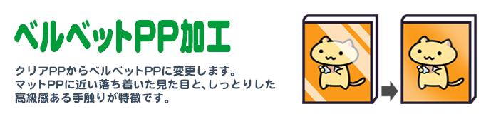 ■ベルベットPP加工