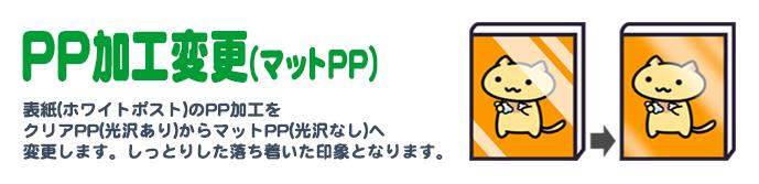PP加工変更(マット)
